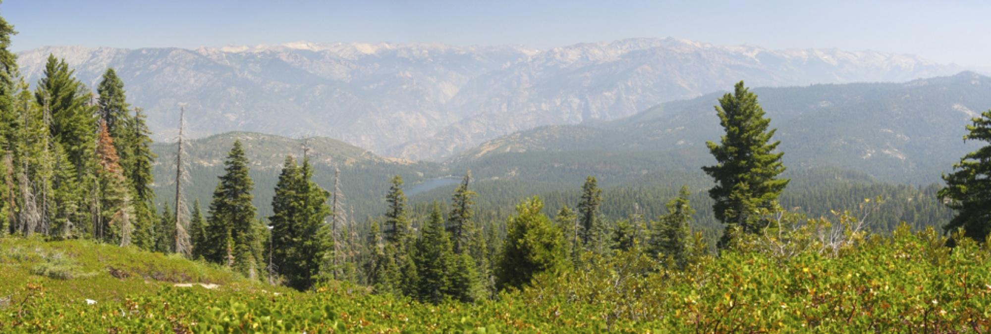 southern sierra landscape